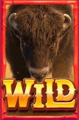 เกม Buffalo Win
